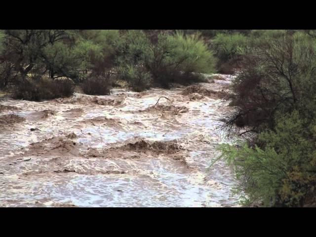 Tucson Arizona: Desert Flood