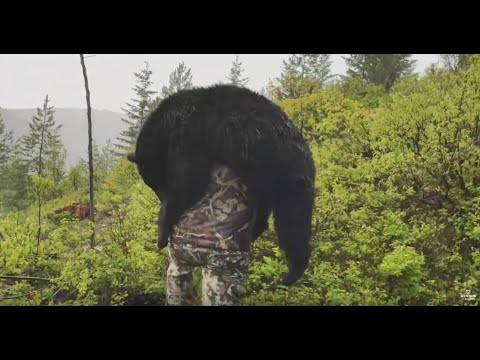 SPRING BEAR HUNTING WITH ROKSLIDE BEAR CAMP CREW