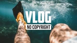 DayFox - Lioness (Vlog No Copyright Music)