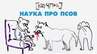 Наука про псов — Научпок