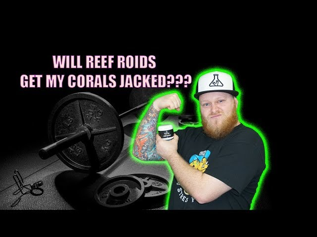 KUSH CORALS PUTS REEF ROIDS TO THE TEST.