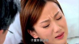 同在屋檐下under The Same Rooftop第33集 主演 贾静雯 郝平 马德钟 马丽