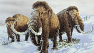 Ancient Music - Ice Age