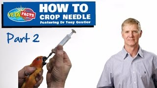 How to Crop Needle PART 2