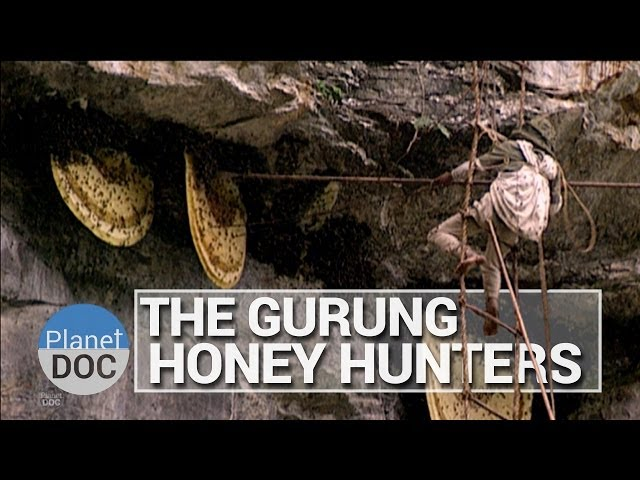 The Gurung Honey Hunters | Culture - Planet Doc Full Documentaries