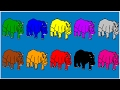 Surprise Kids Hub | Learn Colors for Kids and Color Rhinoceros | Coloring Pages for Kids