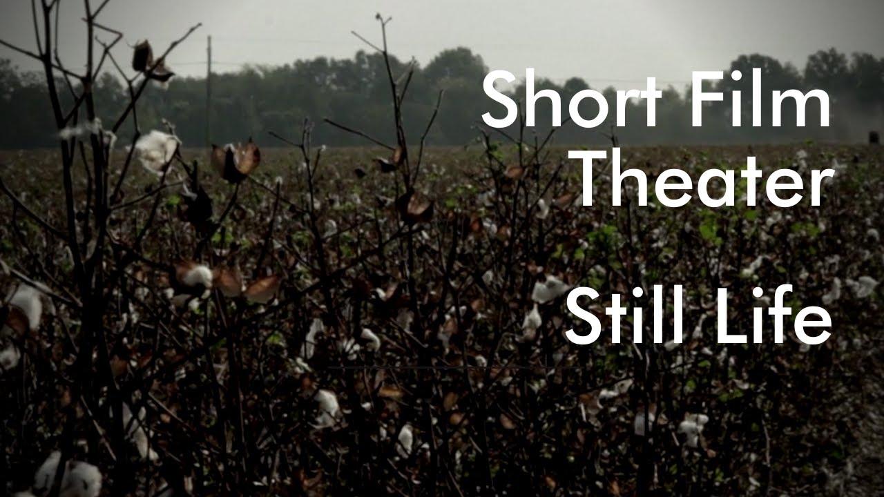 Still Life | Indie Short Film | Drama