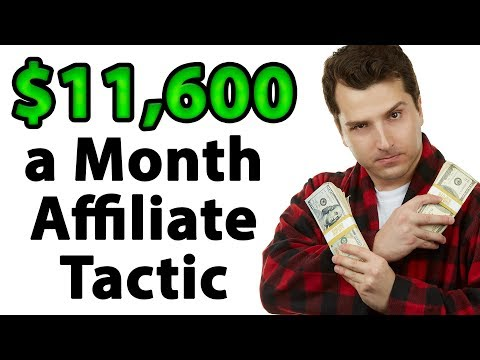 How to Make $11,600 a Month Online w/ Web Tools (Lazy Affiliate Approved!)