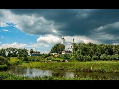 Купить дом на хуторе. Черниговская область.