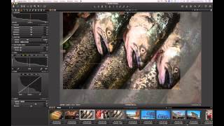The Vignetting Tool in Capture One Pro 7 | Phase One