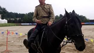 Мастер-класс о подготовке лошади к джигитовке. Провел Орлан Монгуш(Семинар проводился в рамках Чемпионата России по джигитовке 12-14 июля 2013 года. Немного о ведущем: Монгуш..., 2013-07-22T04:37:40.000Z)