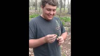 Dumb Friend tries to Smoke Skunk Weed