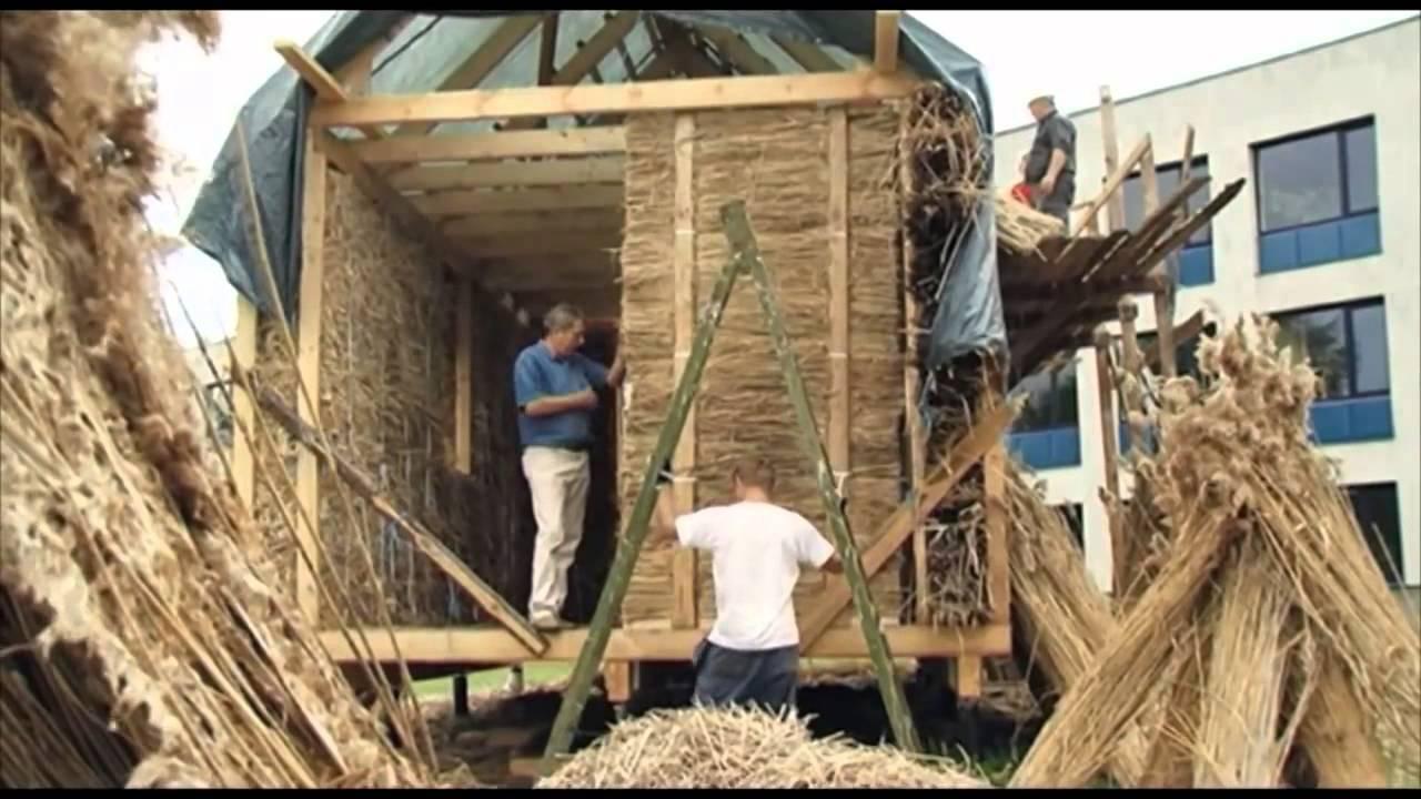 использование биомассы для получения энергии реферат