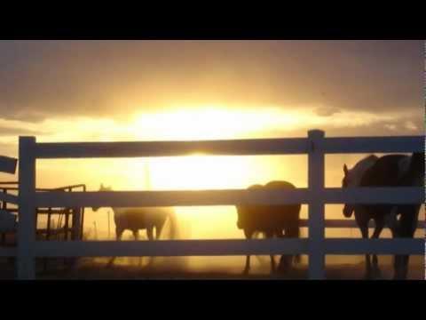 (HD 720p) Beethoven's Symphony #6, V - Shepherd's Hymn