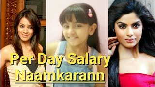 Checkout Per Day Salary of Naamkaran Actors | TV Prime Time