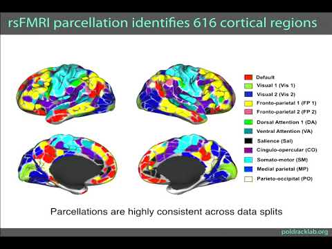 8th Annual TMII Symposium – 2018 – Session I - Neuroimaging – Russell Poldrack, PhD