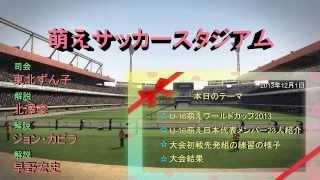 萌えサッカー番組「萌えサッカースタジアム」です。 2013年11月に行われ...