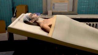 遺体安置所の初仕事で信じられない事が起きて怖すぎるホラーゲーム