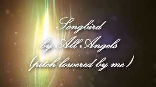 Songbird (male version) - All Angels