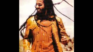 Higher Vibrations by Ziggy Marley and the Melodymakers