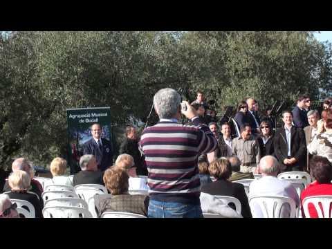 Godall, 20101114 Agrupacio Musical de Godall presentacio Lacrima Olea Mil·lenaria 3