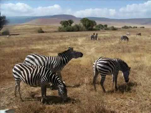 Best Places of Tanzania