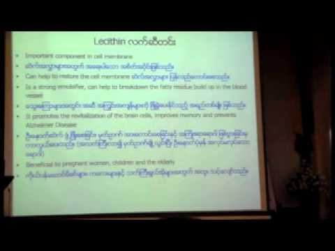 VTS 02 2 (Double Crane Myanar Leadership Seminar 02