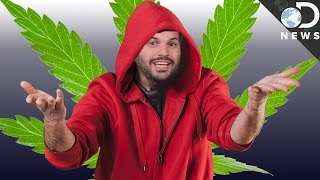 Does Marijuana Make You A Loser? Not Necessarily.
