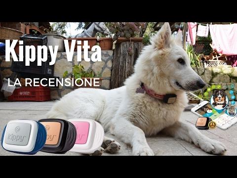 Kippy Vita, la recensione del miglior GPS per cani e gatti