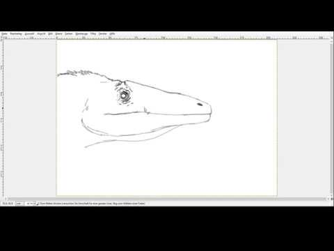 Paleo Speedsketching Test 13# Megaraptor