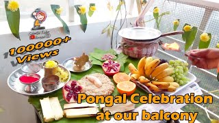 Pongal Celebration at balcony in home /Pongal Recipe /Traditional Festival / Indian festival /Tamil