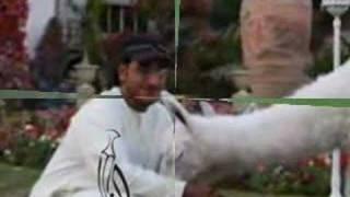 المرحوم الشيخ ناصر بن زايد آل نهيان