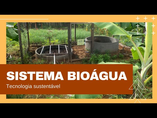 Sistema Bioágua - reúso da água cinza