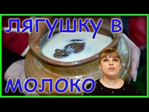 Вопрос: Как лягушка в чане с молоком может его охладить?