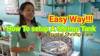 How to Setup Shrimp Tank Using ADA Japan Crystal Red Shrimp for breeding繁殖水晶虾缸方法
