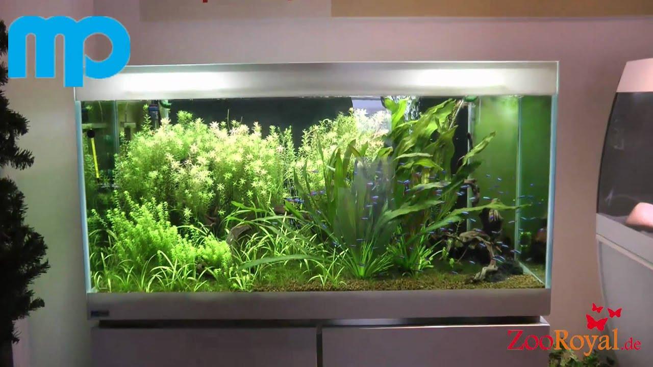 80x40x50 aquarium