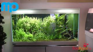 Mp-designer-aquarium-w1