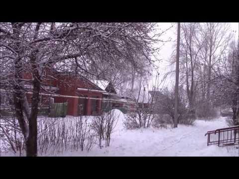 Снежная Сосновка ( Вятскополянский район) 2016