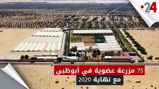 75 مزرعة عضوية في أبوظبي مع نهاية 2020