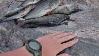 Рыбалка в Карелии. Поход 2 часть