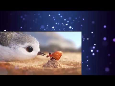Piper Short animation film فلم الانيميشن القصير