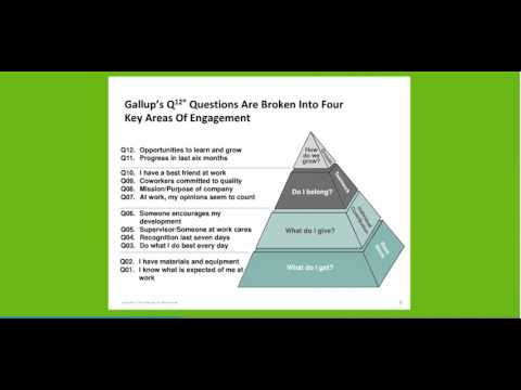 Engagement and Gallup
