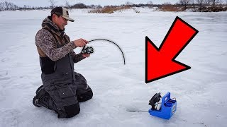 Ice Fishing a TINY Pond for GIANT FISH!!! (CATCH CLEAN COOK)