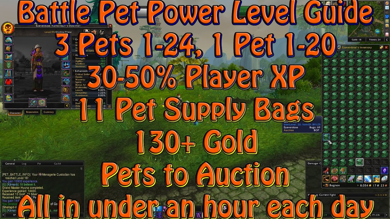 battle pet power leveling guide 1 hour a day for big rewards youtube rh youtube com Vanilla WoW Leveling Guide WoW 1 90 Leveling Guide