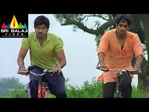 Baava Movie Climax Cycle Race Scene   Siddharth, Pranitha   Sri Balaji Video