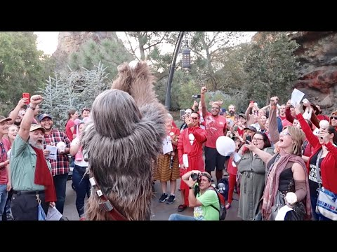 Star Wars Life Day Celebration In Galaxy's Edge - Disneyland Holiday with Chewbacca & Boba Fett