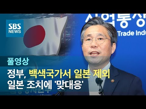 정부, 백색국가서 일본 제외…일본 조치에 '맞대응' (풀영상) / SBS