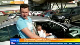 Напавшие с битами на авто со старушкой под Челябинском оказались охранниками поля