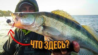 Джиг Ловля судака Рыбалка 2020 Спиннинг для джига Судак