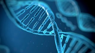 Human Genome Project: Solving Life